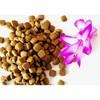 Pet Food Factory Supply Natural and Organic Dry Dog Food