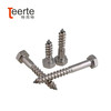 Factory price DIN571 Stainless  Steel Hex  wood screw