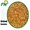 Nameko in brine from China,grade A3