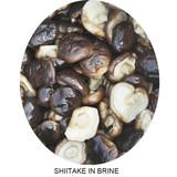 Shiitake in brine from China FUNONG mushroom factory