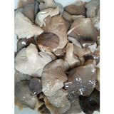 Pleurotus in brine 3-5cm