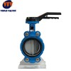 Wafer Butterfly Valve with Universal Flange Pin