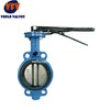 Water Butterfly Valve with Universal Flange (Pin)