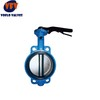 Rubber Lined wafer Butterfly valve