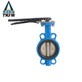 Wafer Type Pin Backed Seat Butterfly Valve