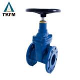 Cast steel flanged gate valve