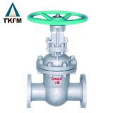 TKFM 6 flanged grarbox gate valve sizes