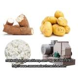 Potato starch extraction process plant