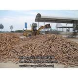 Cassava flour processing plant and machine