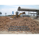Cassava starch processing machine to produce cassava starch