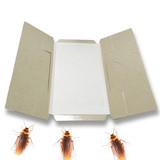 Eco-friendly feature cockroach killer roach bait cockroach glue trap
