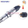 dodge cummins diesel injectors Common Rail Injector 6110701687-MB Cdi Injector