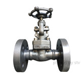 Forged Gate Valve,A105 Body, DN20,600LB,RF End