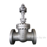 API 600 Flanged Gate Valve, 10 Inch, CL900, WCB Body,RF