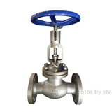 Ansi 316L Globe Valve with Position Indicator,2 Inch,300LB,RF
