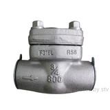 2500LB Piston Check Valve , F316 Body , F316 Trim , Seal Bonnet ,DN25, RF