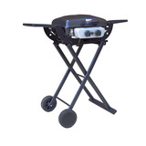 2 burners folding camping gas grill