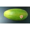 Fresh  Papaya   tranhuong @ kimminhexim.com