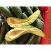 Fresh Avocados  tranhuong @ kimminhexim.com