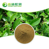 Organic green tea extract catechins egcg natural green tea powder