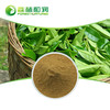 GMP Factory Provide Tea Polyphenols Extract From Organic Green Tea