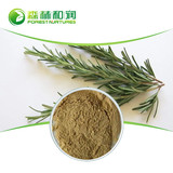 Rosmarinic Acid Carnosic Acid Ursolic Acid Rosemary Leaf Extract Powder