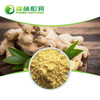 Food grade gingerol high purity wild ginger powder ginger extract