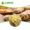 Natural wild ginger extract gingerols 5%~20% ginger root powder