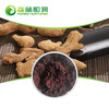 Manufacture Supply Ginger Powder 6-Gingerol Black Ginger Extract