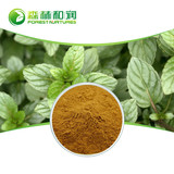 Manufacturer dried peppermint powder natural mint extract free sample