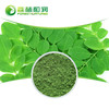 Hot Selling Organic Moringa Leaf Extract Powder 10:1 Best Price