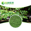 China's supply Plant Organic Moringa Leaf Powder Health Benefits