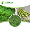 Healthcare product Moringa Leaf Powder Oleifera Leaf Extract Free Sample