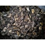 Dried OAK Mushroom(Shiitake) Grade  B