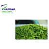 Hot Sell Green Tea Extract