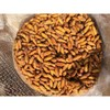 FROZEN SILKWORM CHRYSALIS BEST SELLER