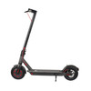 2019 new trending 300W Motor electric scooter on sale
