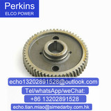 3117L261/T420897 Perkins Fuel Pump Gear for 1103c-33/Perkins engine parts/generator parts