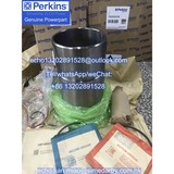 1822333C98 Perkins Piston Liner Kit for 1306 series engine parts/FG Wilson generator parts