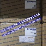 2644C314/22 Fuel Injection Pump for Perkins/CAT Caterpillar 1106