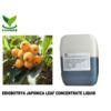 Eriobotrya Japonica Leaf Extract Liquid