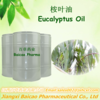 Natural Essential Oil Manufacturer Eucalyptus Oil in Bulk