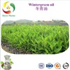 冬青油,水杨酸甲脂,Wholesale 100% pure natural methyl salicylate wintergreen oil