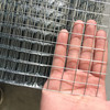Hot-dipped galvanized or Pvc coated welded wire mesh