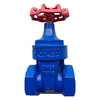 Cast iron in the soft sealing gate valve