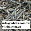 Dried Anchovies/Dried Fish with best quality, best price