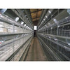Hot Galvanized Automatic Chicken Cage/Poultry Farm House Design  custom steel structure chicken house  chicken house for sale