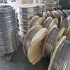 SUS 304 Seamless Stainless Steel Coil Tube for Gas From China Supplier