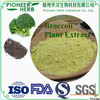 Broccoli Seed Extract Glucoraphanin