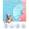 Daily cleaning puppy training pad product